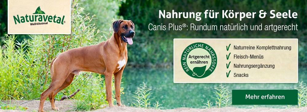 Naturavetal logo mit Hund in der Natur